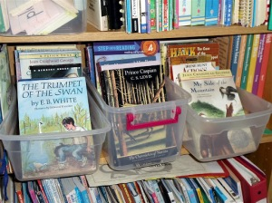 Organizing Your Homeschool Library: Blog She Wrote