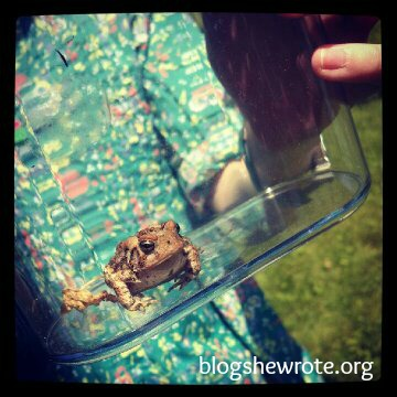 Blog She Wrote: Insect & Critter Adventure