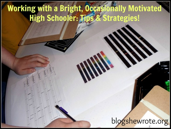 Blog She Wrote: Strategies for working with the occasionally motivated teen