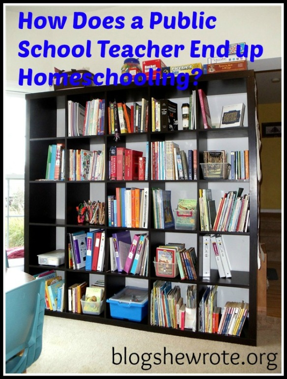 Blog She Wrote: How Does a Public School Teacher End Up Homeschooling?