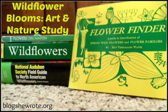 Blog She Wrote: Wildflower Art & Nature Study