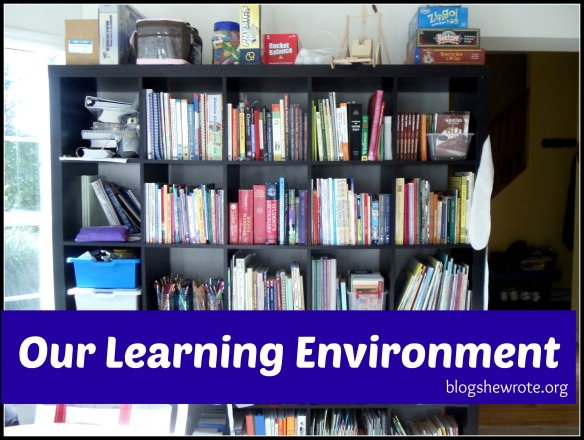 Blog She Wrote: Learning Environment
