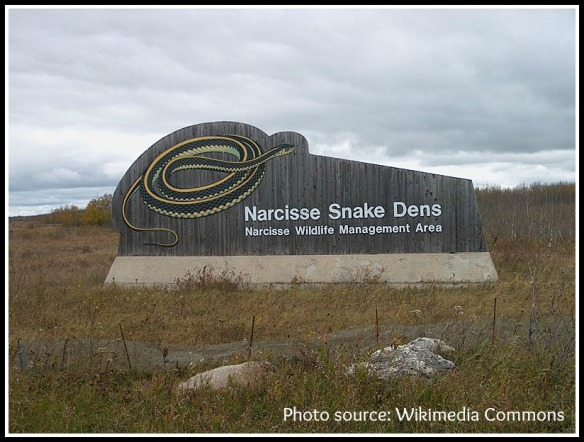 Blog, She Wrote: Geography Quest- Snake Pit Edition