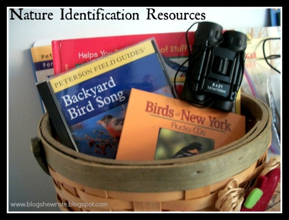 Blog, She Wrote: Geography Quest- Bird Migration Edition