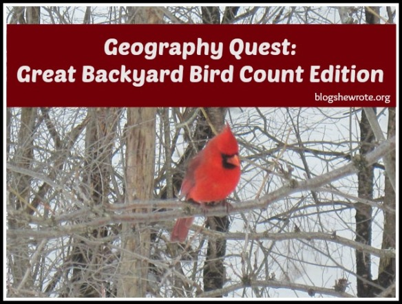 Blog, She Wrote: Great Backyard Bird Count Edition